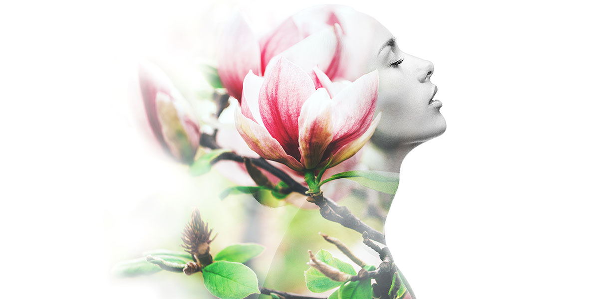 Eternal Beauty Facial Laser Vein Removal Services